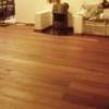 Zwam onder de vloer – deel 2