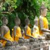Thailand: De jungle in Khao Sok