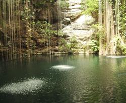 Grote en diepe cenote waarin lange boomwortels hangen en je heerlijk kunt zwemmen